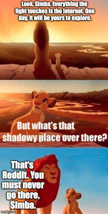 Simba Shadowy Place | Look, Simba. Everything the light touches is the internet. One day, it will be yours to explore. That's Reddit. You must never go there, Sim | image tagged in memes,simba shadowy place | made w/ Imgflip meme maker