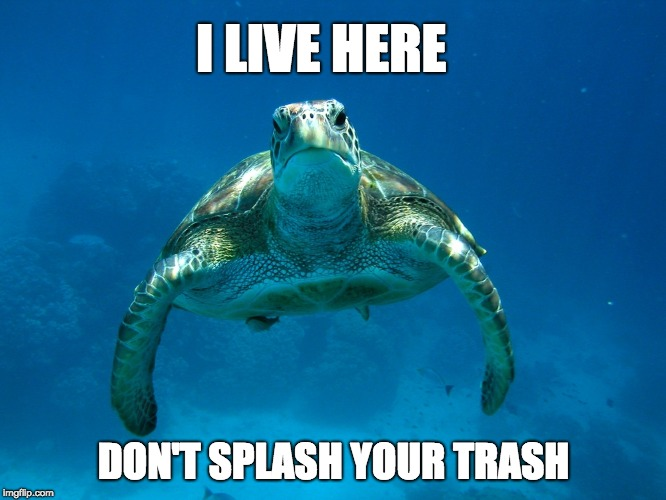 Save the ocean | I LIVE HERE DON'T SPLASH YOUR TRASH | image tagged in ocean,turtle,save the earth,save the ocean,turtles,earth day | made w/ Imgflip meme maker