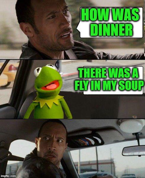 Frog week. June 4-10 | HOW WAS DINNER THERE WAS A FLY IN MY SOUP | image tagged in kermit rocks,frog week | made w/ Imgflip meme maker