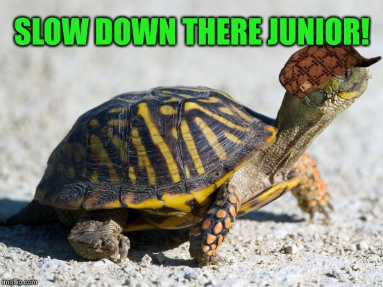 SLOW DOWN THERE JUNIOR! | made w/ Imgflip meme maker