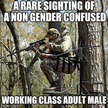 A RARE SIGHTING OF A NON GENDER CONFUSED WORKING CLASS ADULT MALE | image tagged in hunting stand | made w/ Imgflip meme maker