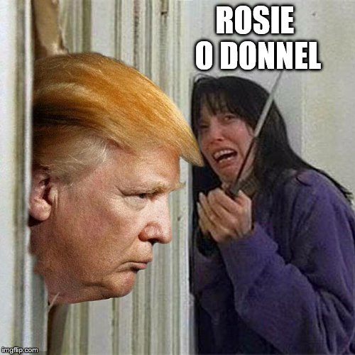 Donald trump here's Donny | ROSIE O DONNEL | image tagged in donald trump here's donny | made w/ Imgflip meme maker