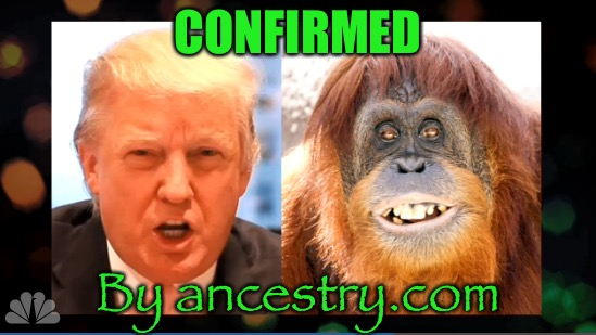 CONFIRMED By ancestry.com | made w/ Imgflip meme maker