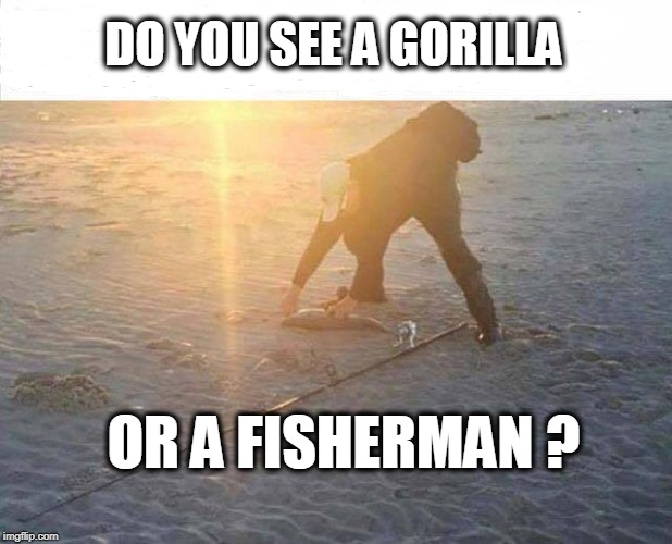 Gorilla or Fisherman? | DO YOU SEE A GORILLA OR A FISHERMAN ? | image tagged in gorilla,fisherman,optical illusion | made w/ Imgflip meme maker