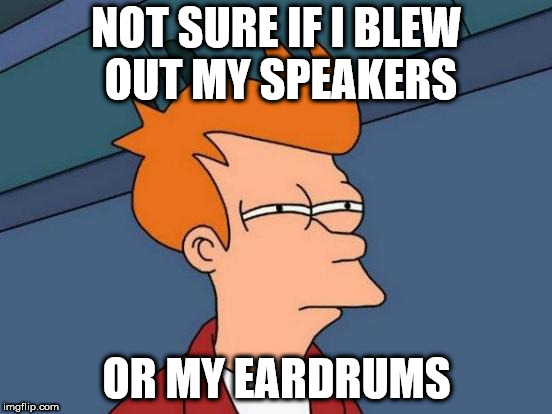 Pump up the volume | NOT SURE IF I BLEW OUT MY SPEAKERS OR MY EARDRUMS | image tagged in memes,futurama fry,sound | made w/ Imgflip meme maker