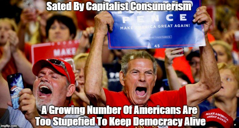 Sated By Capitalist Consumerism A Growing Number Of Americans Are Too Stupefied To Keep Democracy Alive | made w/ Imgflip meme maker