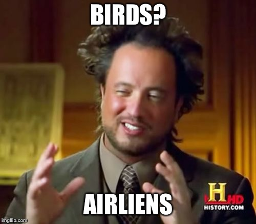 Ancient Aliens Meme | BIRDS? AIRLIENS | image tagged in memes,ancient aliens | made w/ Imgflip meme maker