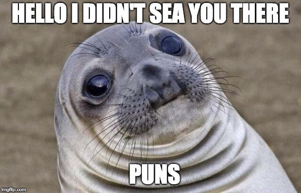 Awkward Moment Sealion Meme | HELLO I DIDN'T SEA YOU THERE PUNS | image tagged in memes,awkward moment sealion | made w/ Imgflip meme maker
