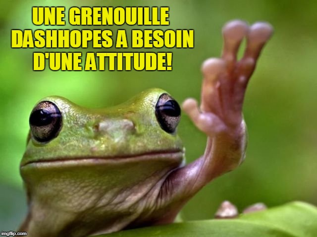 UNE GRENOUILLE DASHHOPES A BESOIN D'UNE ATTITUDE! | made w/ Imgflip meme maker