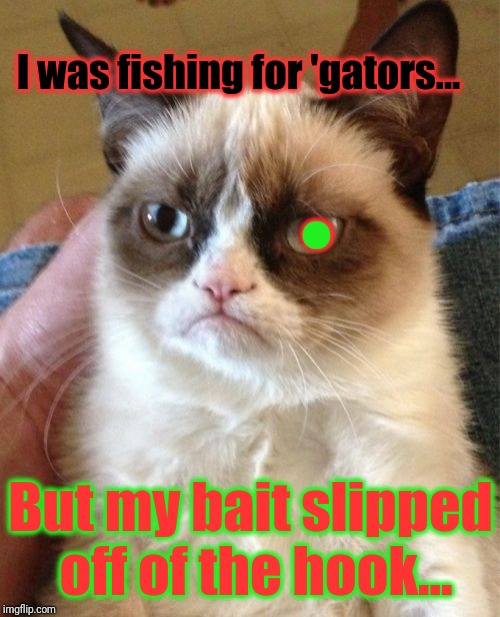 Grumpy Cat Meme | I was fishing for 'gators... But my bait slipped off of the hook... . | image tagged in memes,grumpy cat | made w/ Imgflip meme maker