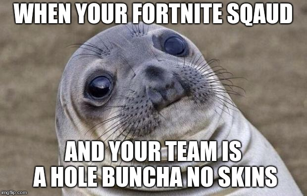 Awkward Moment Sealion Meme | WHEN YOUR FORTNITE SQAUD AND YOUR TEAM IS A HOLE BUNCHA NO SKINS | image tagged in memes,awkward moment sealion | made w/ Imgflip meme maker