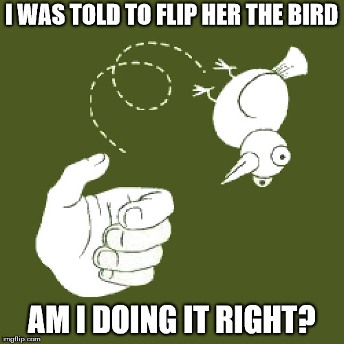 Sometimes instructions can be so unclear | I WAS TOLD TO FLIP HER THE BIRD AM I DOING IT RIGHT? | image tagged in flip the bird,word play | made w/ Imgflip meme maker