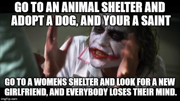 And everybody loses their minds Meme | GO TO AN ANIMAL SHELTER AND ADOPT A DOG, AND YOUR A SAINT GO TO A WOMENS SHELTER AND LOOK FOR A NEW GIRLFRIEND, AND EVERYBODY LOSES THEIR MI | image tagged in memes,and everybody loses their minds | made w/ Imgflip meme maker