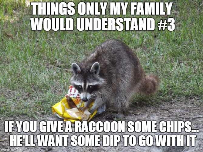 Trash panda meme |  THINGS ONLY MY FAMILY WOULD UNDERSTAND #3; IF YOU GIVE A RACCOON SOME CHIPS... HE'LL WANT SOME DIP TO GO WITH IT | image tagged in trash panda | made w/ Imgflip meme maker