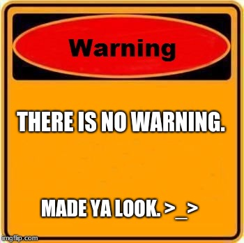 Warning Sign Meme | THERE IS NO WARNING. MADE YA LOOK. >_> | image tagged in memes,warning sign | made w/ Imgflip meme maker