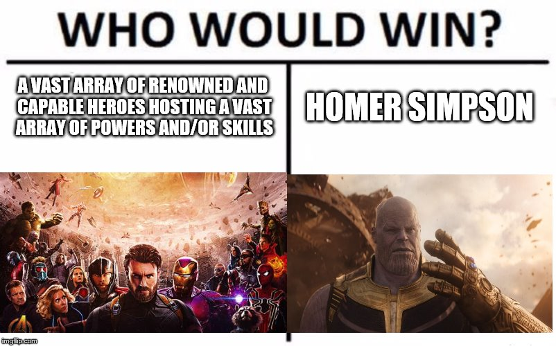 Who Would Win? | A VAST ARRAY OF RENOWNED AND CAPABLE HEROES HOSTING A VAST ARRAY OF POWERS AND/OR SKILLS HOMER SIMPSON | image tagged in memes,who would win,infinity war,avengers infinity war | made w/ Imgflip meme maker