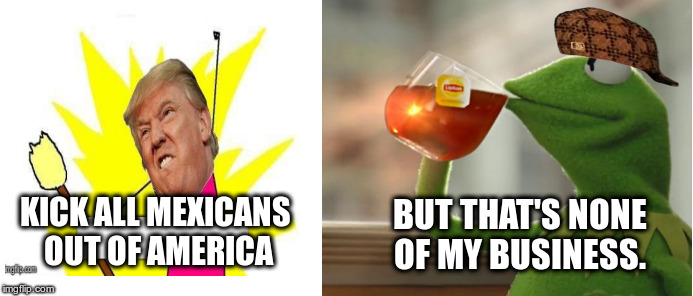 KICK ALL MEXICANS OUT OF AMERICA BUT THAT'S NONE OF MY BUSINESS. | image tagged in donald trump,frog,but thats none of my business | made w/ Imgflip meme maker