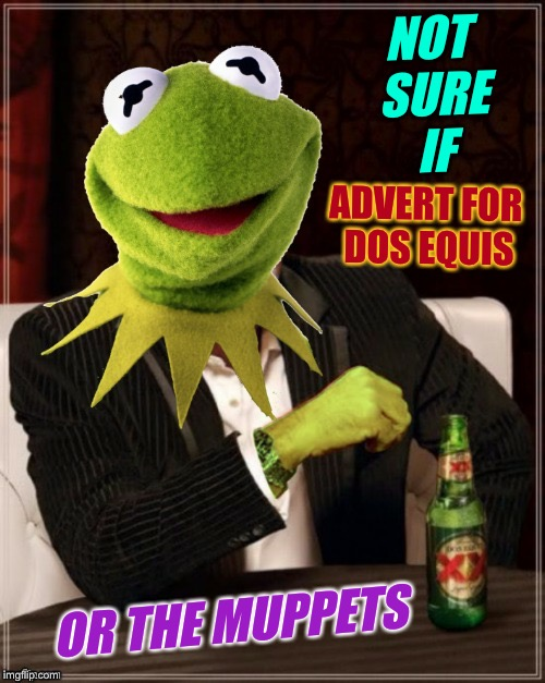 Frog Week, June 4-10, a JBmemegeek & giveuahint event! (Template courtesy of btbeeston!) | NOT SURE IF OR THE MUPPETS ADVERT FOR DOS EQUIS | image tagged in the most interesting frog in the world,dos equis,kermit,frog week,muppets | made w/ Imgflip meme maker