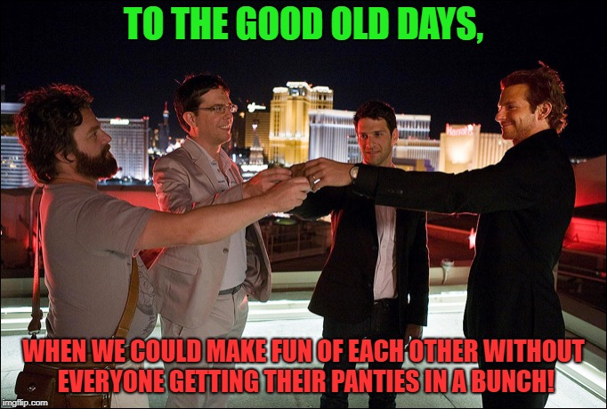 TO THE GOOD OLD DAYS, WHEN WE COULD MAKE FUN OF EACH OTHER WITHOUT EVERYONE GETTING THEIR PANTIES IN A BUNCH! | image tagged in the hangover cheers | made w/ Imgflip meme maker