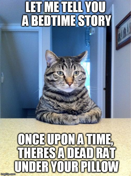 Take A Seat Cat Meme | LET ME TELL YOU A BEDTIME STORY ONCE UPON A TIME, THERES A DEAD RAT UNDER YOUR PILLOW | image tagged in memes,take a seat cat | made w/ Imgflip meme maker