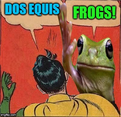 DOS EQUIS FROGS! | made w/ Imgflip meme maker