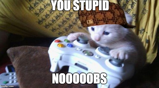 mlg cat | YOU STUPID NOOOOOBS | image tagged in mlg cat,scumbag | made w/ Imgflip meme maker