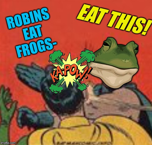 ROBINS EAT FROGS- EAT THIS! | made w/ Imgflip meme maker