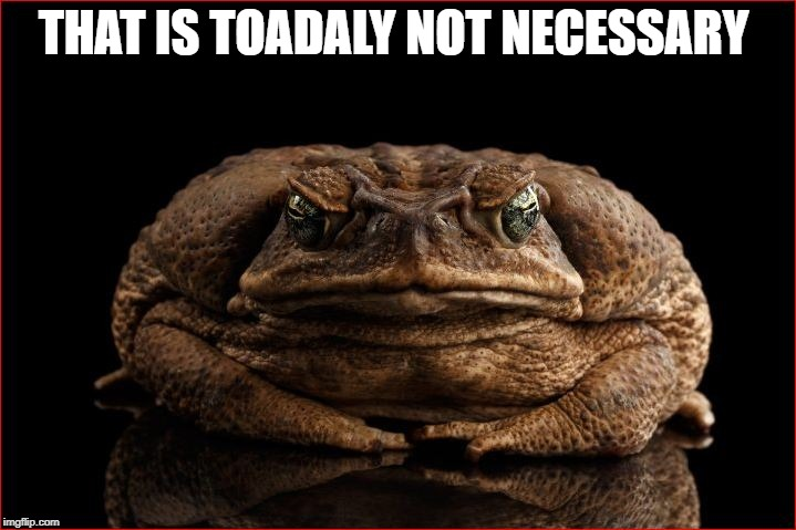 THAT IS TOADALY NOT NECESSARY | made w/ Imgflip meme maker