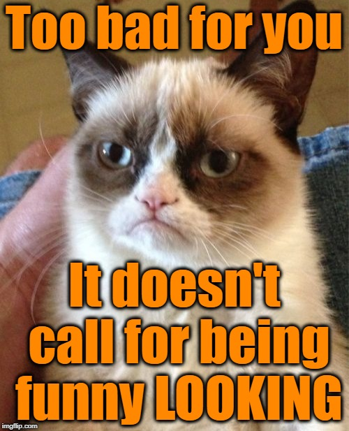 Grumpy Cat Meme | Too bad for you It doesn't call for being funny LOOKING | image tagged in memes,grumpy cat | made w/ Imgflip meme maker