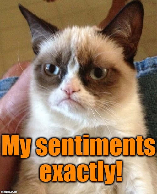 Grumpy Cat Meme | My sentiments exactly! | image tagged in memes,grumpy cat | made w/ Imgflip meme maker