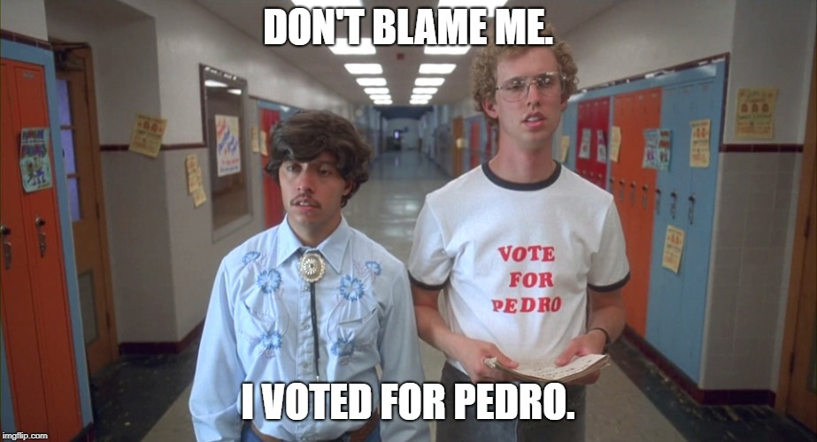 vote pedro | DON'T BLAME ME. I VOTED FOR PEDRO. | image tagged in vote pedro | made w/ Imgflip meme maker