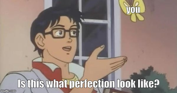 is this a pigeon | you Is this what perfection look like? | image tagged in is this a pigeon | made w/ Imgflip meme maker