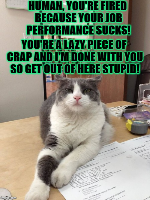 HUMAN, YOU'RE FIRED BECAUSE YOUR JOB PERFORMANCE SUCKS! YOU'RE A LAZY PIECE OF CRAP AND I'M DONE WITH YOU SO GET OUT OF HERE STUPID! | image tagged in you're fired slave | made w/ Imgflip meme maker