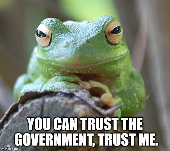 YOU CAN TRUST THE  GOVERNMENT, TRUST ME. | image tagged in frog week | made w/ Imgflip meme maker