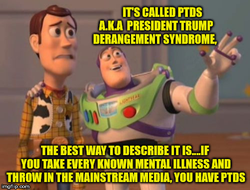 X, X Everywhere Meme | IT'S CALLED PTDS A.K.A  PRESIDENT TRUMP DERANGEMENT SYNDROME, THE BEST WAY TO DESCRIBE IT IS....IF YOU TAKE EVERY KNOWN MENTAL ILLNESS AND T | image tagged in memes,x x everywhere | made w/ Imgflip meme maker