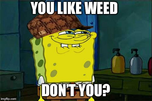 Dont You Squidward Meme | YOU LIKE WEED DON'T YOU? | image tagged in memes,dont you squidward,scumbag | made w/ Imgflip meme maker