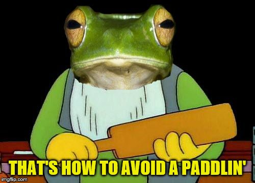 THAT'S HOW TO AVOID A PADDLIN' | made w/ Imgflip meme maker