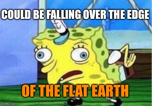 Mocking Spongebob Meme | COULD BE FALLING OVER THE EDGE OF THE FLAT EARTH | image tagged in memes,mocking spongebob | made w/ Imgflip meme maker