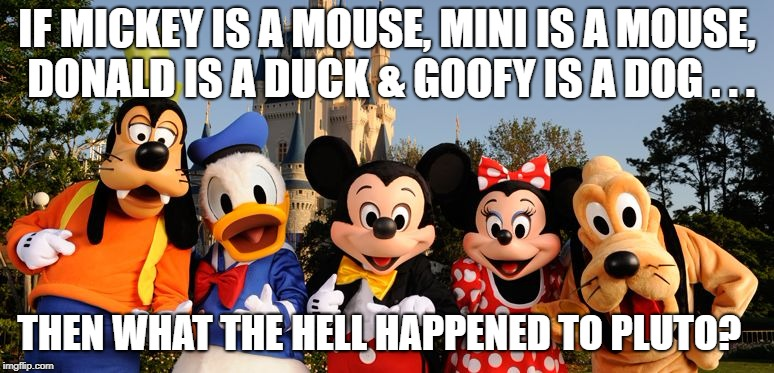 Walt Disney forget to Animorph Pluto? | IF MICKEY IS A MOUSE, MINI IS A MOUSE, DONALD IS A DUCK & GOOFY IS A DOG . . . THEN WHAT THE HELL HAPPENED TO PLUTO? | image tagged in disney,humor,comedy,dark humor | made w/ Imgflip meme maker
