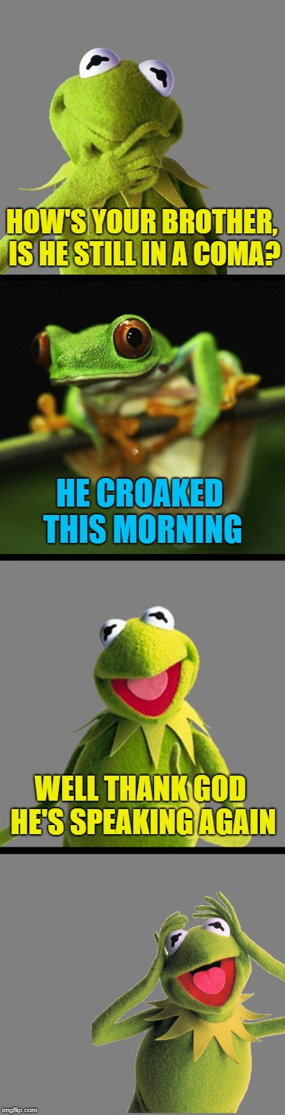 His Brother is in Intensive Ker-mit   (Frog Week June 4-10, a JBmemegeek & giveuahint event!) |  HOW'S YOUR BROTHER, IS HE STILL IN A COMA? HE CROAKED THIS MORNING; WELL THANK GOD HE'S SPEAKING AGAIN | image tagged in bad pun kermit,bad pun frog,kermit,frog week | made w/ Imgflip meme maker