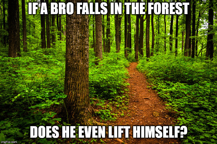 forest path | IF A BRO FALLS IN THE FOREST DOES HE EVEN LIFT HIMSELF? | image tagged in forest path | made w/ Imgflip meme maker