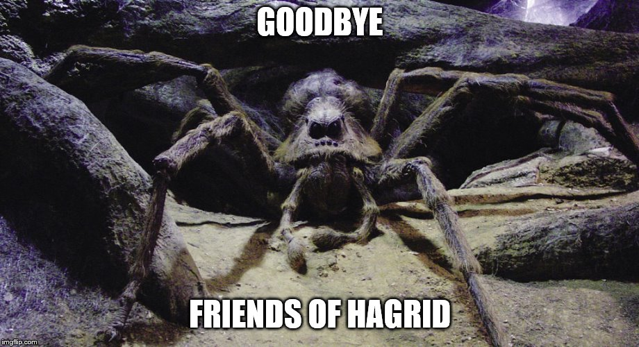 You're going to need a bigger shoe! | GOODBYE FRIENDS OF HAGRID | image tagged in spider | made w/ Imgflip meme maker