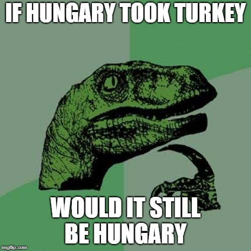 Philosoraptor Meme | IF HUNGARY TOOK TURKEY WOULD IT STILL BE HUNGARY | image tagged in memes,philosoraptor | made w/ Imgflip meme maker