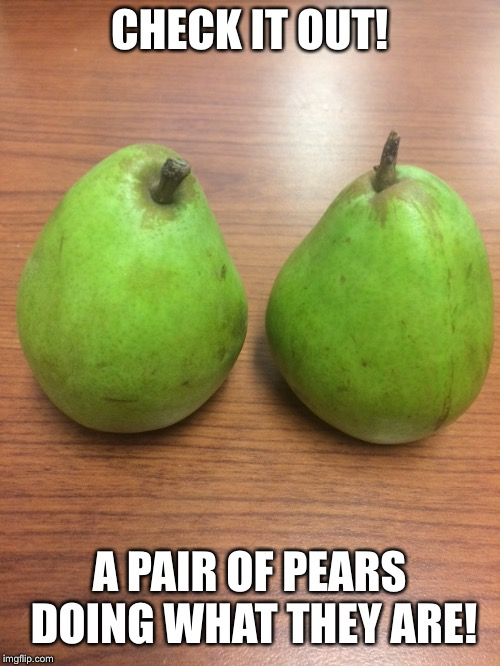Meme your lunch | CHECK IT OUT! A PAIR OF PEARS DOING WHAT THEY ARE! | image tagged in food for thought | made w/ Imgflip meme maker