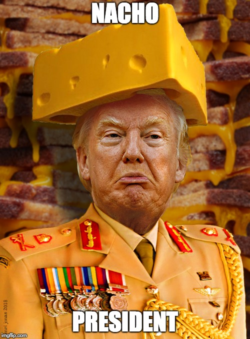 NACHO PRESIDENT | image tagged in commander of cheese | made w/ Imgflip meme maker