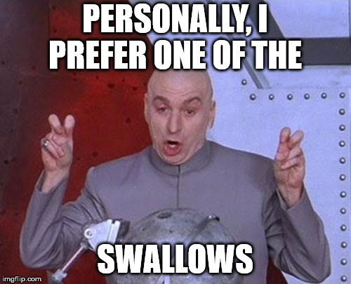 Dr Evil Laser Meme | PERSONALLY, I PREFER ONE OF THE SWALLOWS | image tagged in memes,dr evil laser | made w/ Imgflip meme maker