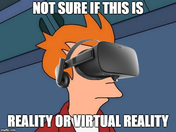 Virtual Reality | NOT SURE IF THIS IS REALITY OR VIRTUAL REALITY | image tagged in memes,futurama fry,not sure if,fry not sure,fry not sure vr,virtual reality | made w/ Imgflip meme maker