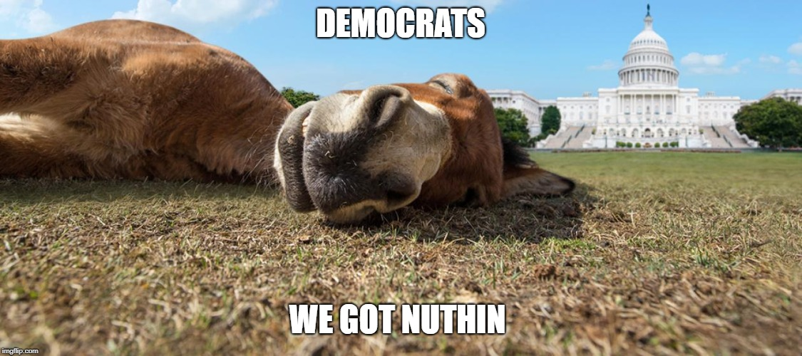 Democrats | DEMOCRATS WE GOT NUTHIN | image tagged in democrats | made w/ Imgflip meme maker