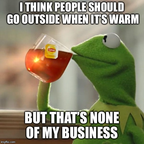 But Thats None Of My Business | I THINK PEOPLE SHOULD GO OUTSIDE WHEN IT'S WARM BUT THAT'S NONE OF MY BUSINESS | image tagged in memes,but thats none of my business,kermit the frog | made w/ Imgflip meme maker