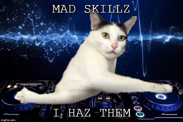 MAD SKILLZ I HAZ THEM | made w/ Imgflip meme maker